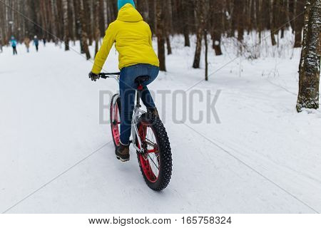 Woman on bicycle in winter forest at day