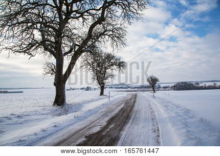 Winter landscape with fields and meadows / Frosty Day