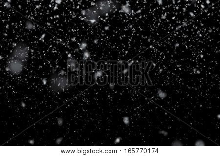 Christmas Snowflakes Falling Snow From Top, Winter Holiday Xmas Event