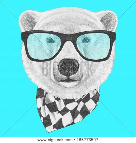 Portrait of Polar Bear with glasses and scarf. Hand drawn illustration.