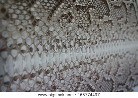 leather snake closeup brown, for the manufacture of products at the plant