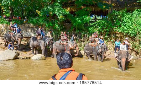 Tourists Crossing A Thailand River Riding On Elephant Backs