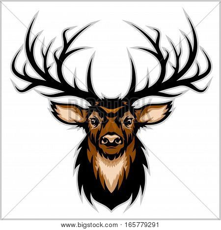 Deer Head. Vector Illustration of Deer Head. Isolated on white.