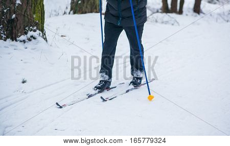 GRODNO BELARUS - JANUARY 15 2017. An old man exercises to improve his health by cross country skiing.