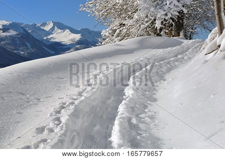 trail in fresh snow by a skier touring