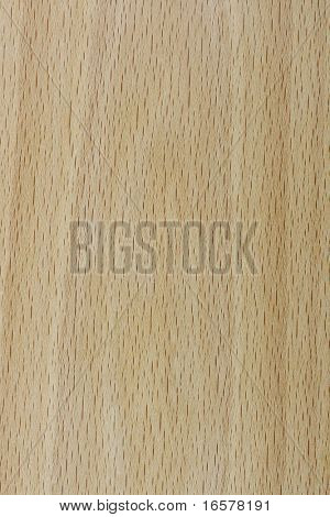Macro background image of a real wooden texture - birch or ash