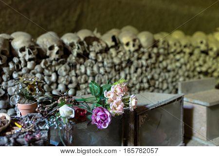 Skulls in Fontanel cemetery Sanità quarter Naples