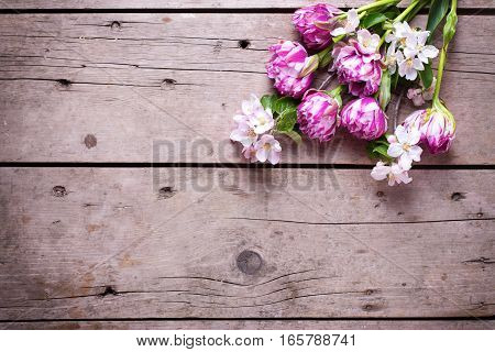 Spring tulips and apple tree flowers on aged wooden background. Selective focus. Place for text. Flat lay still life.