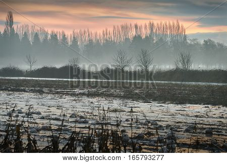 Misty Thaw, Farm Fields. A frozen farmer's field starting to thaw out.