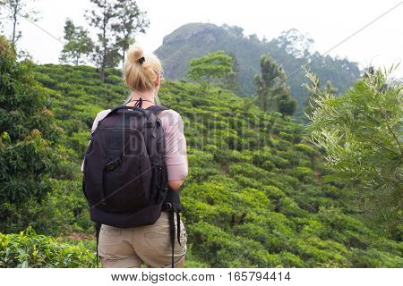 Active caucasian blonde woman enjoyng fresh air and pristine nature while tracking among tea plantatons near Ella, Sri Lanka. Backpecking outdoors tourist adventure.