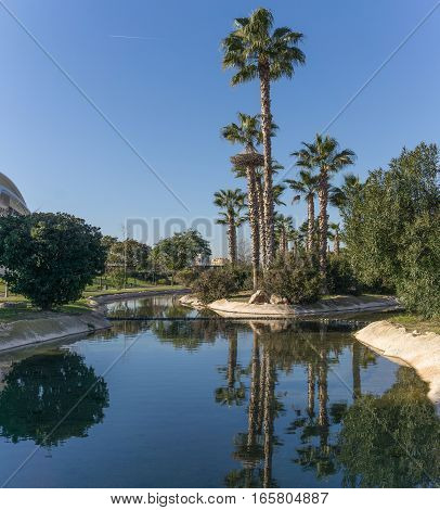 Gardens in the old dry riverbed of the Turia river - reflection of Palm trees in the artificial water channel. Europe, Valencia, Spain, Gigapan