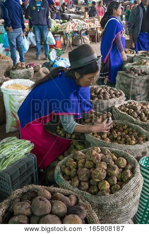 September 6, 2016 Silvia, Colombia: indigenous Guambiano woman dressed in traditional clothes selling potato in the market