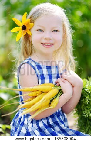 Cute Little Girl Holding A Bunch Of Fresh Yellow Carrots