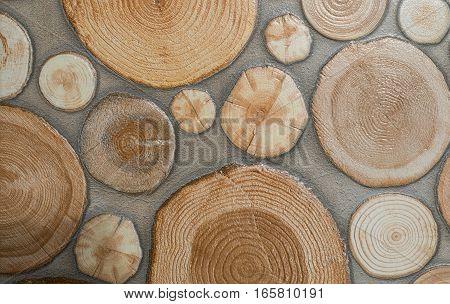 stump patter background stump texture stump tile