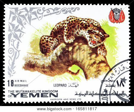 YEMEN - CIRCA 1969 : Cancelled postage stamp printed by Yemen, that shows Leopard.