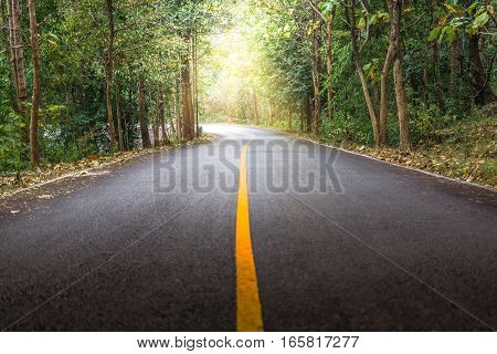 Rural road with a curve and sunlight at Mae Ya Waterfall, Doi Inthanon, Chiang Mai Thailand.