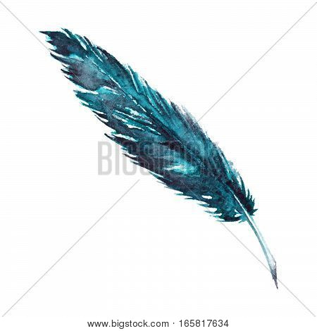 Watercolor single navy blue turquoise bird feather isolated