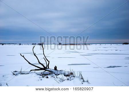 Snowy plain winter landscape with a fallen dead tree trunk