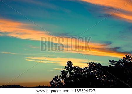 Sunset; late afternoon; landscape; image; images; trees; glow; sun; clouds