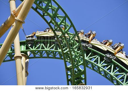 Busch Gardens Tampa Florida USA - October 31 2016: Tourists on Cheetah Hunt roller coaster in Busch Gardens Tampa