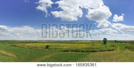 Agricultural fields and blue sky in Krasnodar region