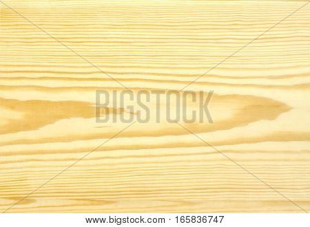 Ash wood background horizontal view close up