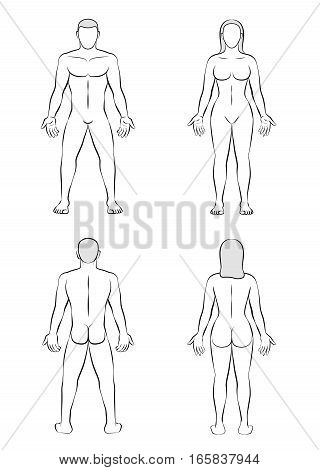 Man and woman - posterior and anterior view - outline illustration of the human body.