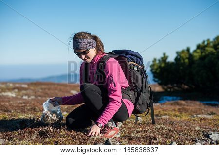 Female Hiker Collecting Herbs A Sunny Day In The Mountains