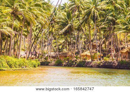 Indian river with palm beach, Agonda, India