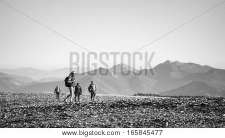 Four Young Athletic People Walking On The Rocky Mountain Plato