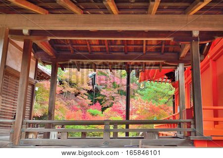 Autumn colors through a temple corridor at Bishamondo Kyoto Japan.