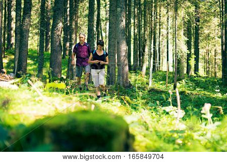 Hiking senior couple walking through a forest.