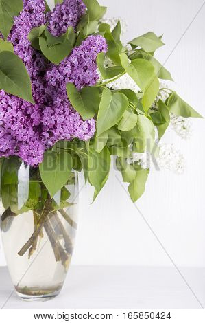 Bouquet Of Lilac In Glass Vase On White Background