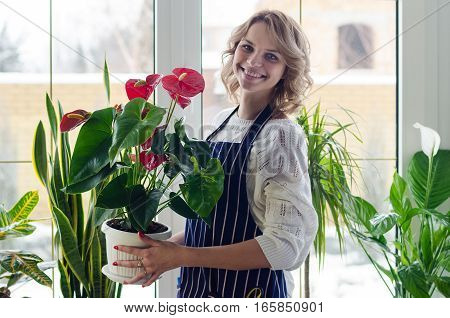 Young woman cultivating flowers, spaying home plants
