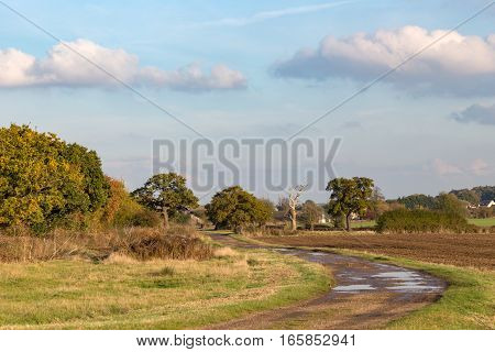 Winding path in the Essex countryside in Autumn. Fall shot of a winding path in the Essex countryside in the autumn on a sunny afternoon.