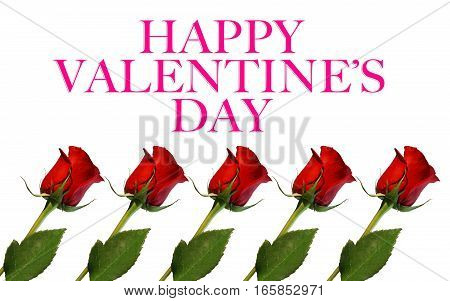 red roses isolated on white background with words Happy Valentine's Day
