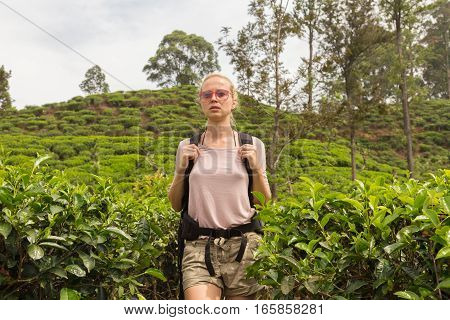 Active caucasian blonde woman enjoying fresh air and pristine nature while tracking among tea plantations near Ella, Sri Lanka. Backpacking outdoors tourist adventure.