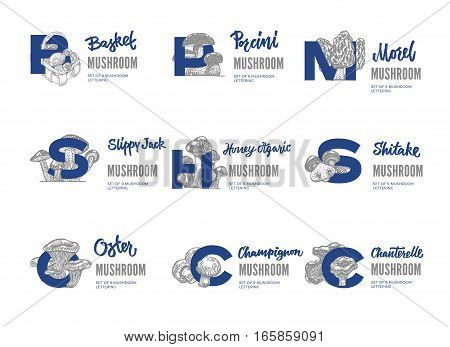 Edible mushroom logos set with lettering in sketch style on white background isolated vector illustration