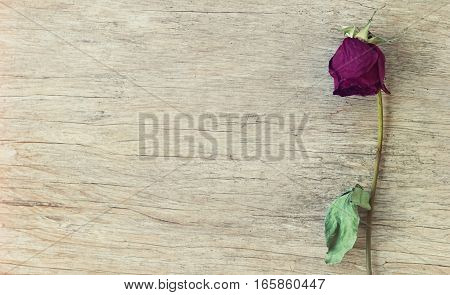 dried-up red rose on a wooden background vintage style