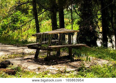Old table in the woods in cameron highlands