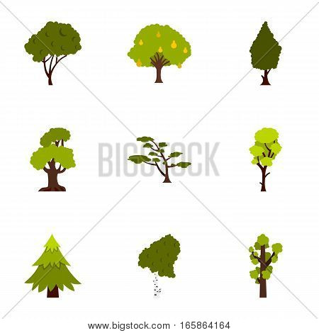 Arboreal plant icons set. Flat illustration of 9 arboreal plant vector icons for web