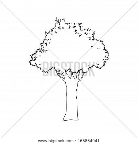 tree icon over white background. vector illustration