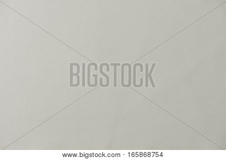 Light Grey Leather Swatch Section