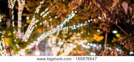 Beautiful illumination decorating the city in Tokyo.