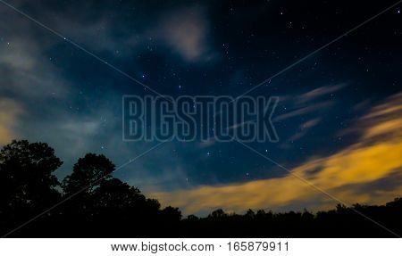 Starry Sky With Trees And Some Clouds
