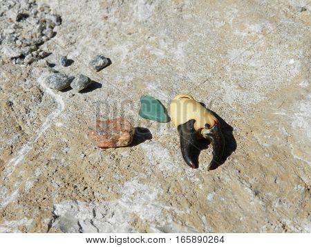 Море, солнце,пляж, горячий песок под ногами... Частички моря,что дарит нам природа.