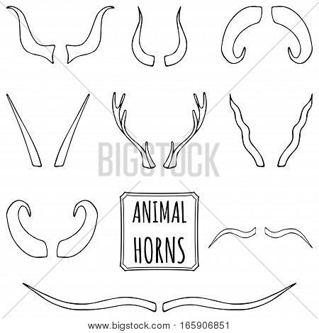 Hand drawn silhouettes set of animal horns made in vector. Deer, sheep, antelope, bullock horns background.