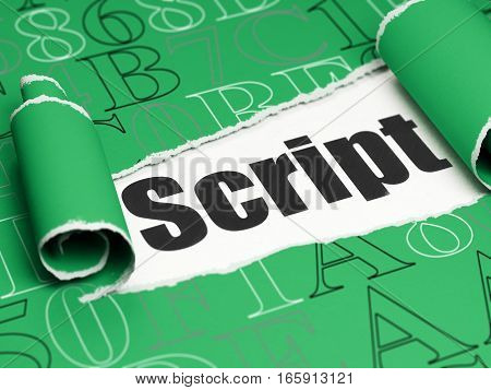 Software concept: black text Script under the curled piece of Green torn paper with  Hexadecimal Code, 3D rendering
