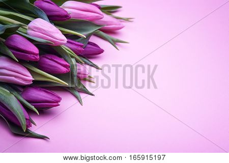 Bouquet of beautiful flowers, buds of spring tulips, flowers on a pink background, holiday items for congratulations