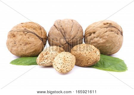 Closeup of Walnuts, almonds isolated on white background.